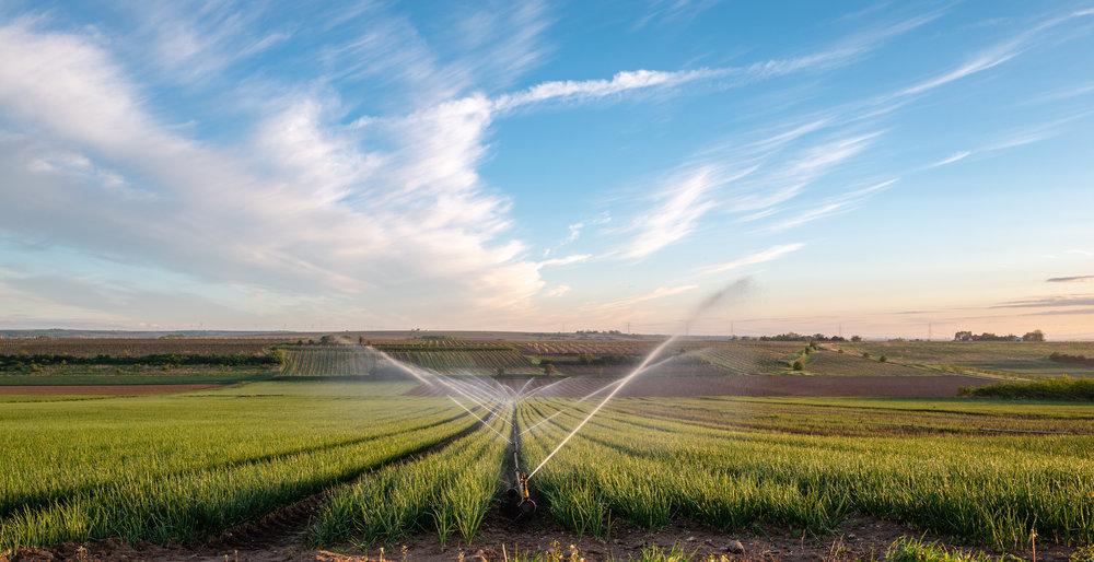 The Four Main Types of Irrigation