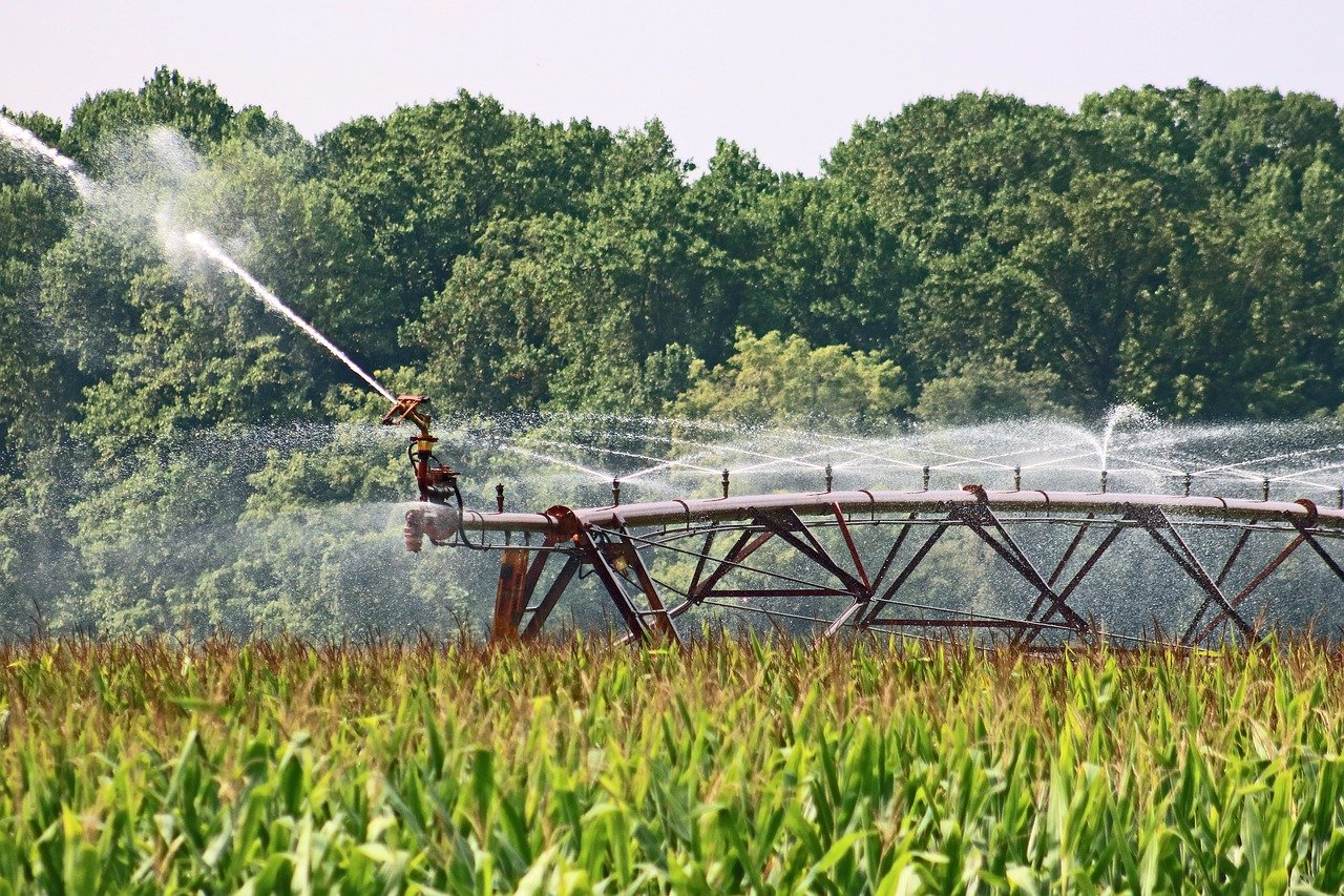 A field of crops being watered