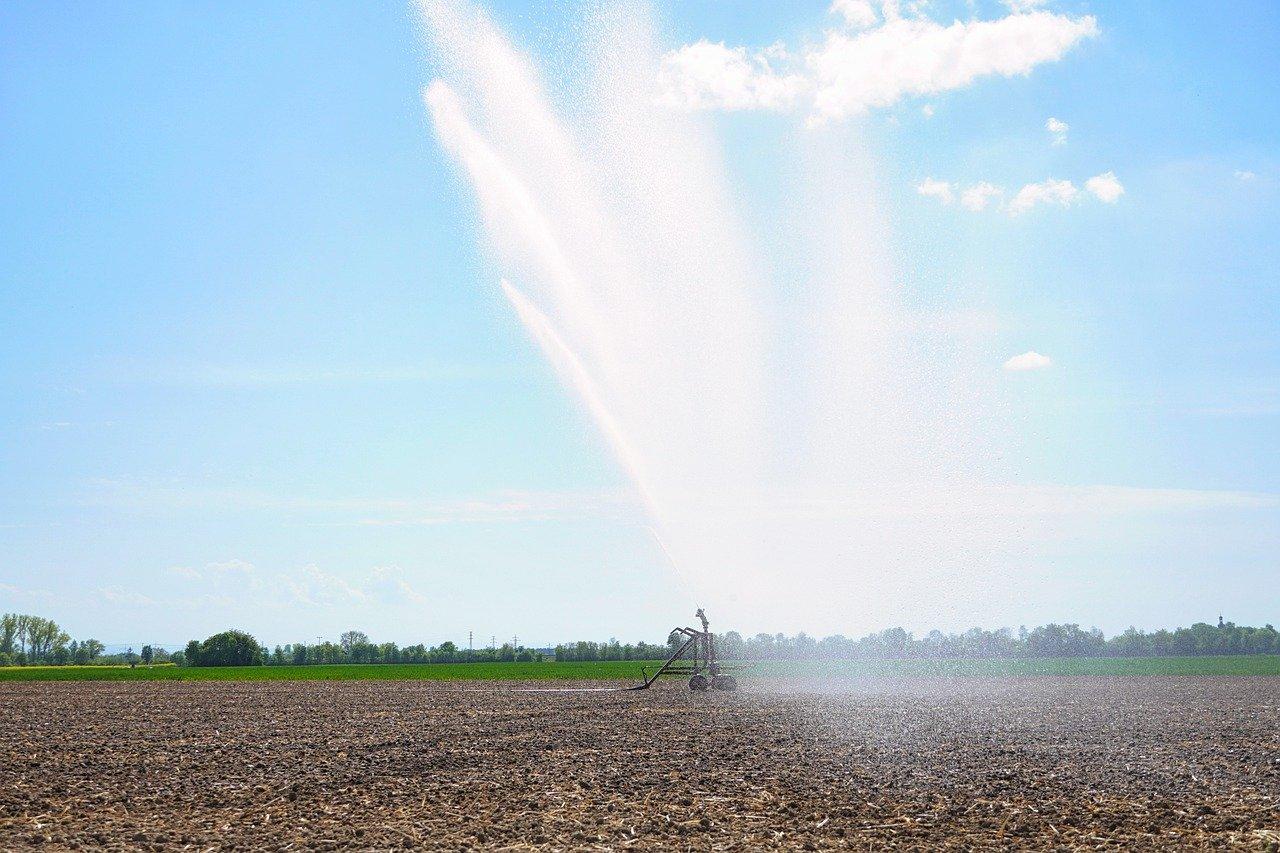 A pump spraying water on crops