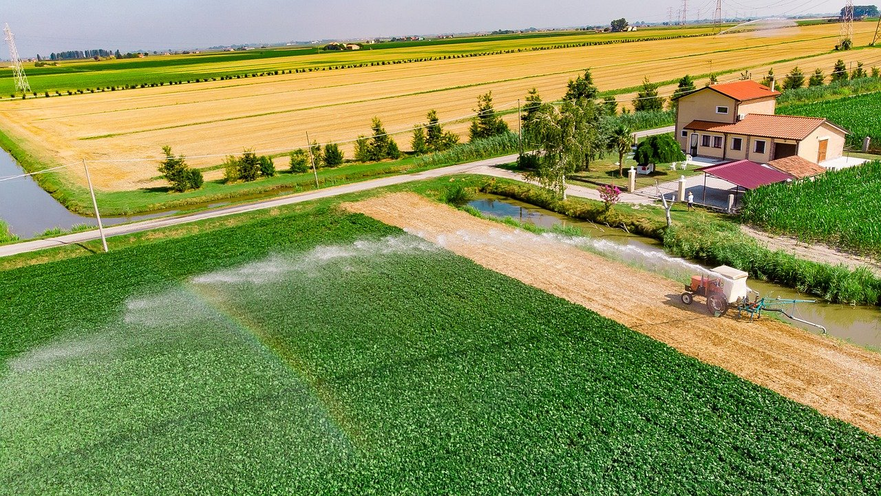 How Much Water Crops Need and Why