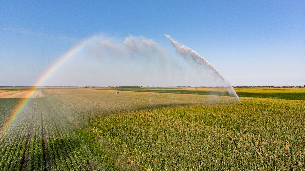 How Do Agricultural Irrigation Systems Work?