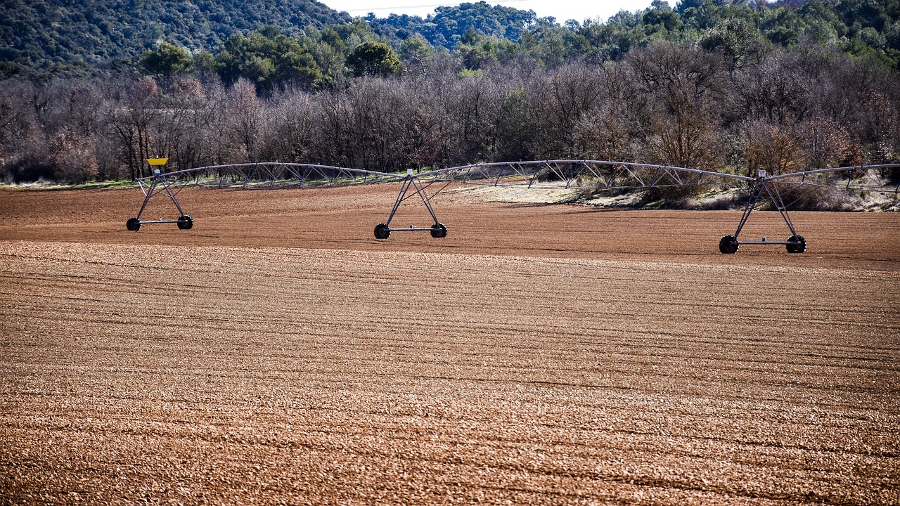 The Reasons Why Irrigation is Important